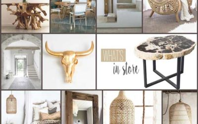 ORGANIC MODERN INTERIORS WITH TOKKARA LIVING